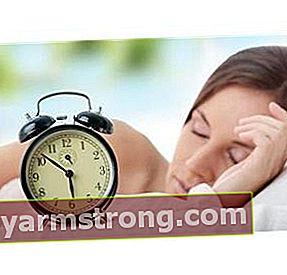 Qual è il ritmo circadiano?