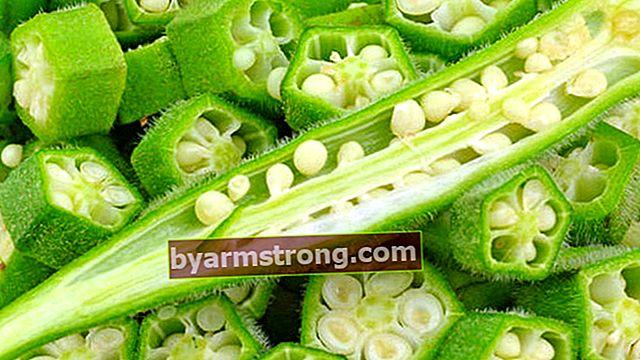 Apa faedah biji okra? Adakah biji okra mengandungi kolagen? Bagaimana cara menggunakan biji okra?