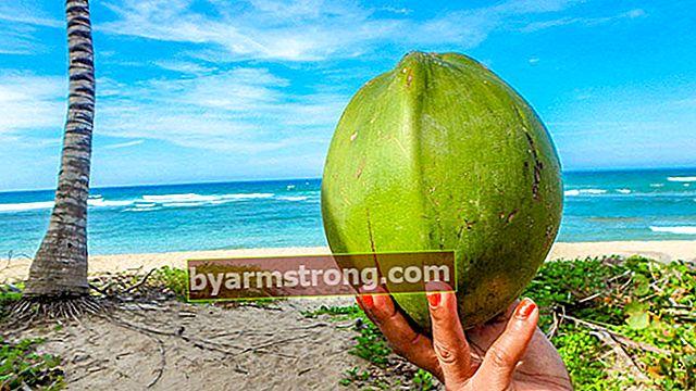 Quali sono i benefici dell'acqua di cocco per pelle, capelli e corpo?