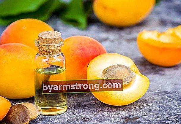 Quali sono i benefici dell'olio di albicocca?