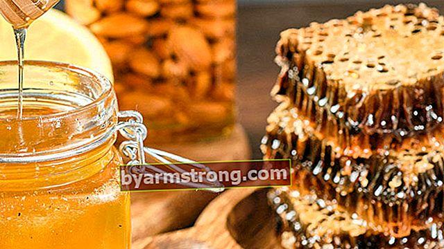 Ingrediente miracoloso: cos'è il miele di Manuka? Quali sono i vantaggi del miele di Manuka?