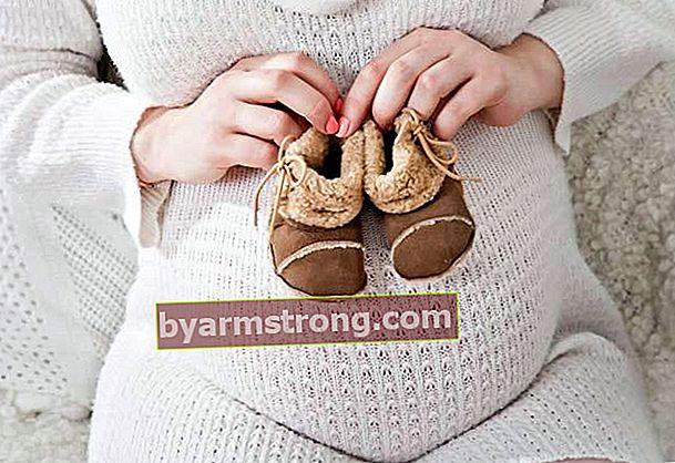 Il fegato può essere mangiato durante la gravidanza?