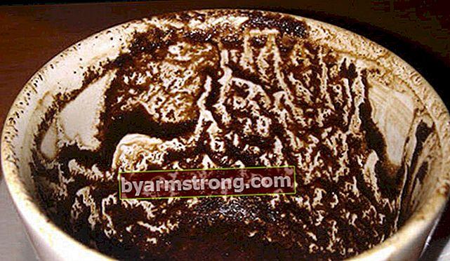 Cosa significa vedere una giraffa a Falda? Cosa significa quando una giraffa appare nella tazza di caffè?