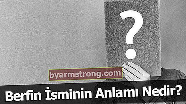 Apa Arti Nama Berfin? Apa maksud Berfin, Apa Artinya?
