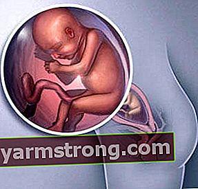 22 สัปดาห์ของการตั้งครรภ์