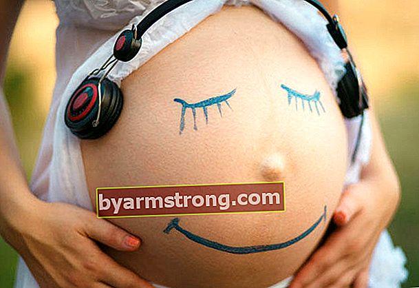 母親の子宮の中で赤ちゃんが最も影響を受けた声