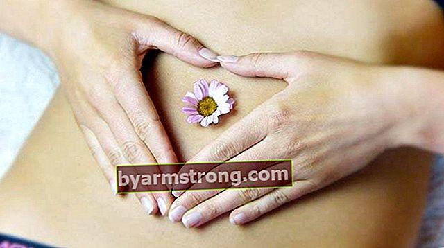 Cosa significa mestruale? Cosa significa periodo mestruale?