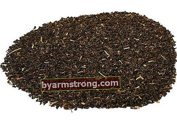 Quali sono i vantaggi del seme Peganum Harmala?
