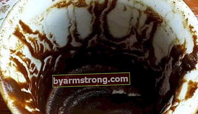 Cosa significa vedere uno struzzo a Falda? Cosa significa quando la forma di struzzo appare in Coffee Fortune?