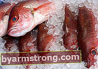 Come viene conservato il pesce?