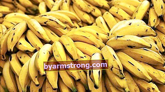 Come conservare la banana? Quali sono i metodi di conservazione delle banane?