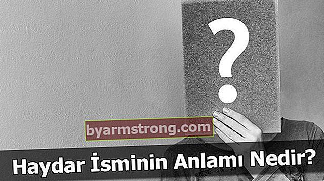 Apa Arti Nama Haydar? Apa Erti Haydar, Apa Artinya?