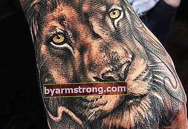 Tatuaggi del leone per simboleggiare forza e indipendenza