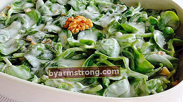 Resipi Salad Purslane - Bagaimana Membuat Salad Purslane dengan Yogurt dan Bawang Putih?