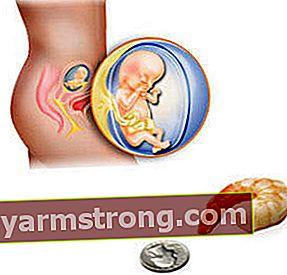 13 settimane di gravidanza