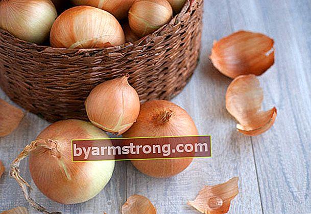 Obat bawang merah yang meningkatkan kemungkinan hamil (Manfaat obat bawang merah)