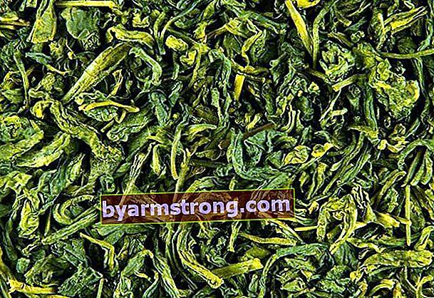 Apakah teh hijau melemah?