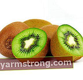Benefici del kiwi e il modo migliore per mangiare!