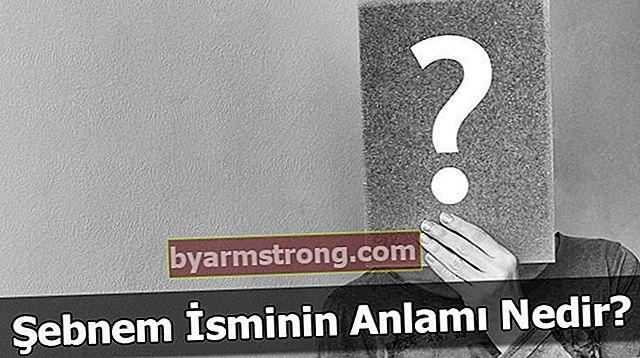 Apa Arti Nama Şebnem? Apa Erti Şebnem, Apa Artinya?
