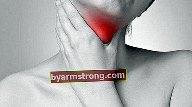 Qual è il dovere della tiroide? Dove si trova la ghiandola tiroidea nel corpo e quali sono le sue caratteristiche?