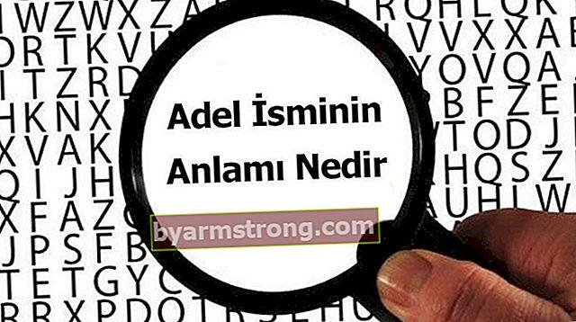 Apa Arti Nama Adel? Apa maksud Adel, Apa maksudnya?