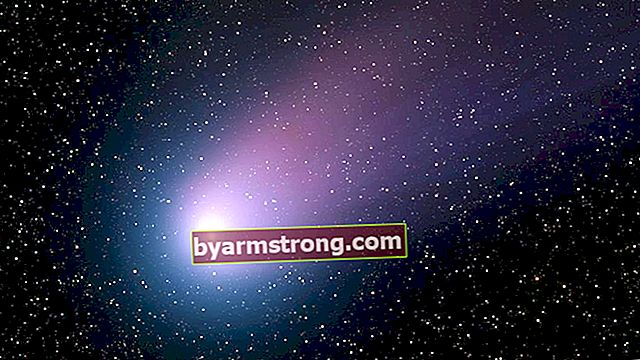 星はどのように形成されますか?星と彗星の形成の概要