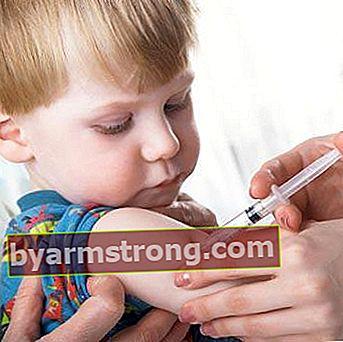 Vaksin cacar air dalam kalender vaksinasi