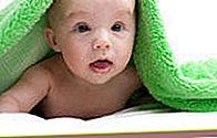 Panduan 'Memahami Bayi'