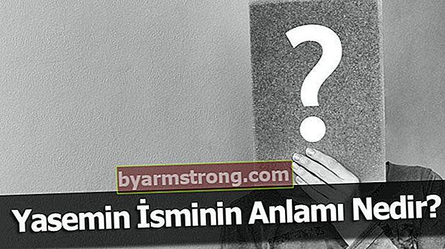 Qual è il significato del nome Yasemin? Cosa significa Jasmine, cosa significa?