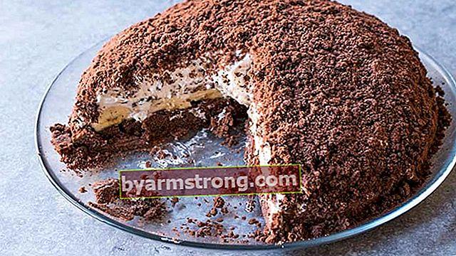 Ricetta torta talpa facile! Come fare una torta talpa, quali sono i suoi ingredienti?