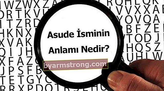 Qual è il significato del nome Asude? Cosa significa Asude, cosa significa?