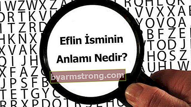 Qual è il significato del nome Eflin? Cosa significa Eflin, cosa significa?