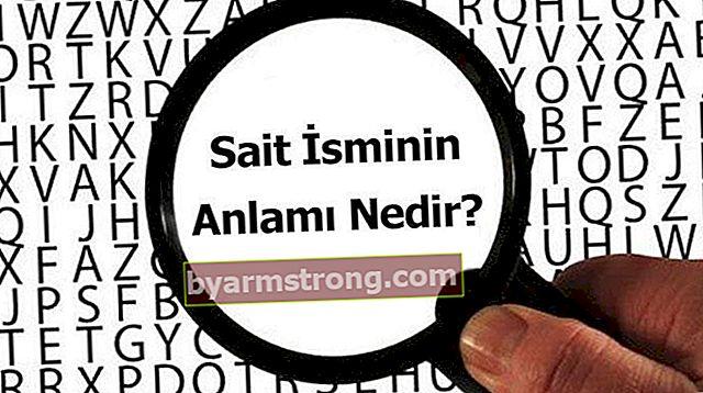 名前の意味は何ですか? Saitはどういう意味ですか、それはどういう意味ですか?