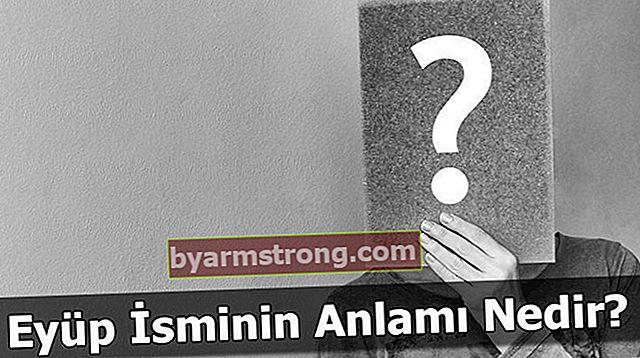 Qual è il significato del nome Eyüp? Cosa significa lavoro, cosa significa?