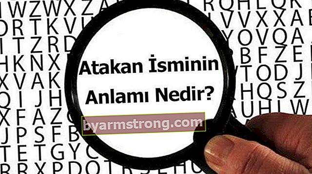 아타칸이라는 이름의 의미는 무엇입니까? Atakan은 무엇을 의미합니까?