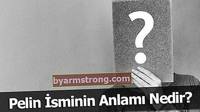 Qual è il significato del nome Pelin? Cosa significa assenzio, cosa significa?