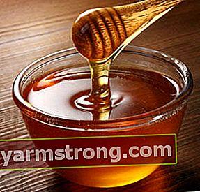 Mengapa madu tidak rusak?