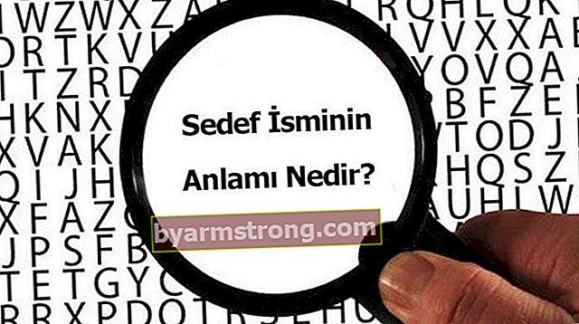 Qual è il significato del nome Sedef? Cosa significa psoriasi, cosa significa?