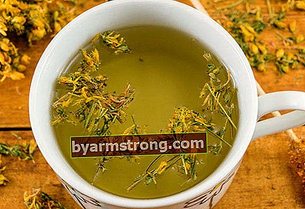 Benefici del tè achillea per le donne