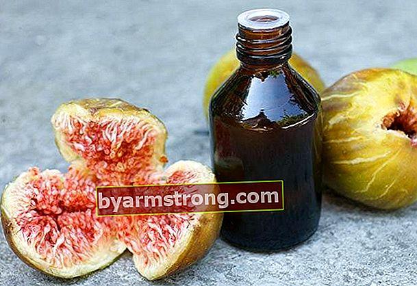 Benefici dell'olio di semi di fico