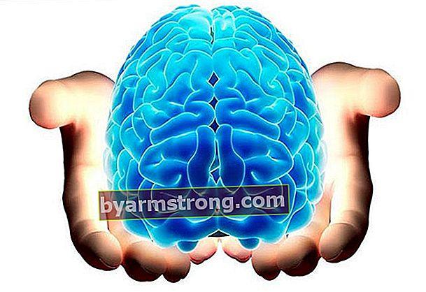 Quali malattie esamina la neurologia?