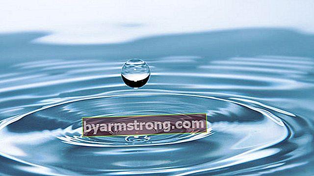 Quanti litri d'acqua è 1 m3 (metro cubo)? Quanti toni è 1 M3?