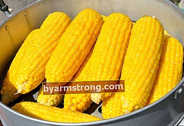 Come viene bollito il mais?