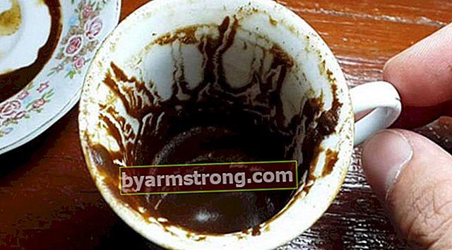 Cosa significa vedere un cammello a Falda? Cosa significa quando un cammello appare nella tazza di caffè?