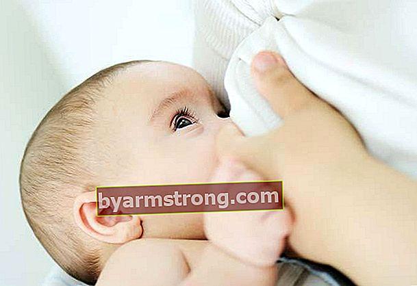 Bagan pemberian makan bayi usia 2 bulan