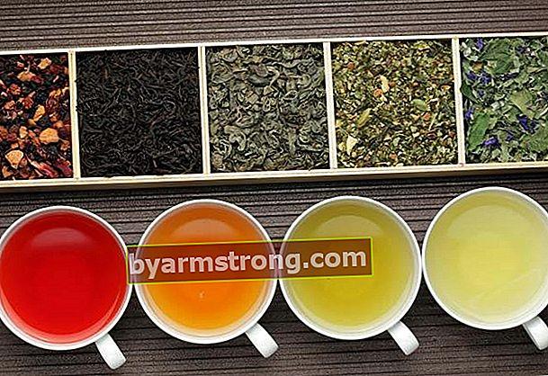 Teh herba karminatif