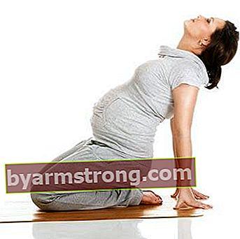 妊娠中の月ごとの運動方法は?