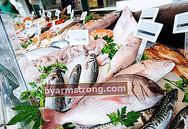 Quale pesce si dovrebbe consumare in quale mese?