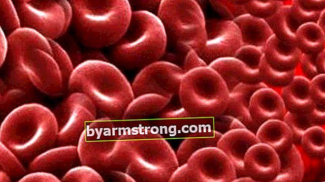 적혈구는 무엇입니까? 적혈구는 몇 개 여야합니까? 높고 낮은 원인