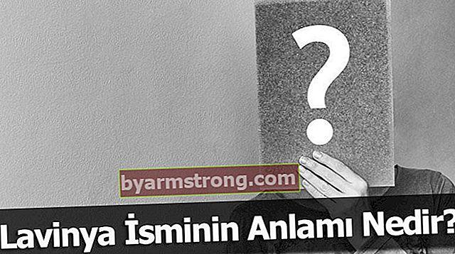 Apa Arti Nama Lavinya? Apa Makna Lavinya, Apa Artinya?